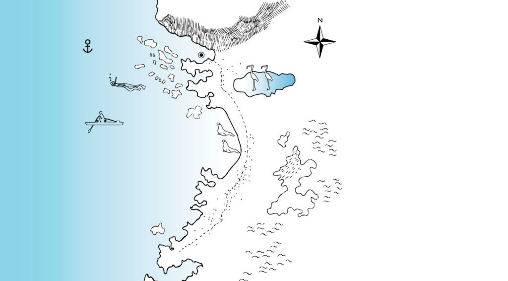 Illustration map of Cerro Brujo in San Cristobal Island with animals and routes