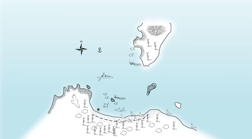 Illustration map of Gardner Bay in Española Island with animals