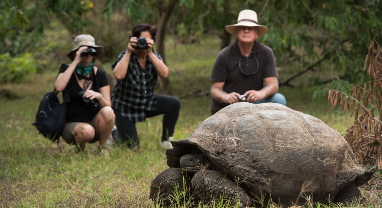 Highlands - Santa Cruz in Galapagos with tourist taking a picture of a giant tortoise