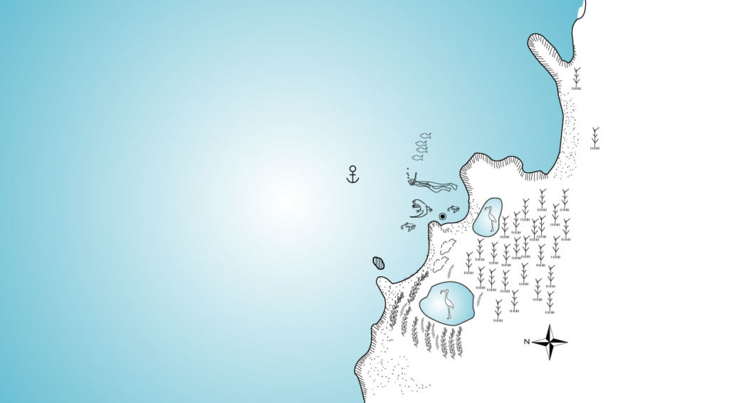 Illustration map of Bachas Beach in Santa Cruz Island