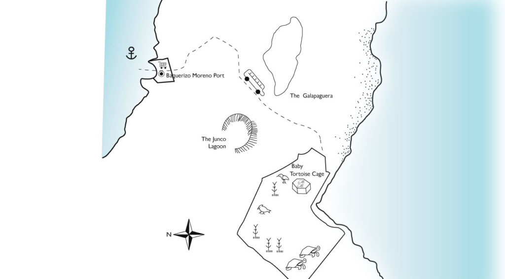 Cerro Colorado in San Cristobal Island illustrated map with animals and routes