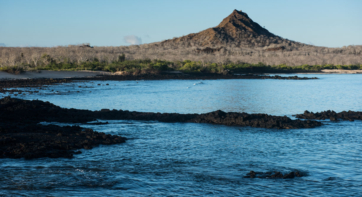 Dragon Hill - Santa Cruz in the Galapagos view of the sea and the volcano with nature
