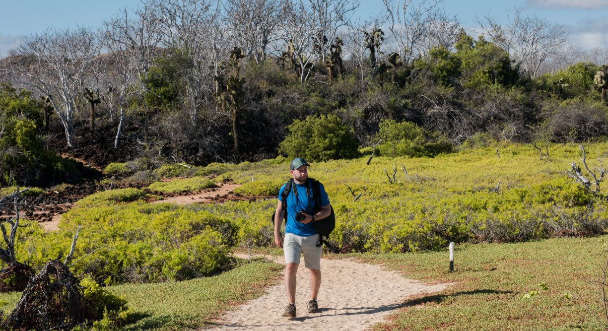 Dragon Hill - Santa Cruz in the Galapagos Islands, view of the nature and tourist walking in the hill
