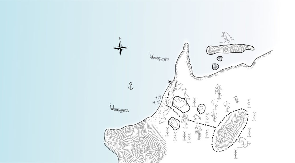 Illustration map of Dragon Hill - Santa Cruz Island