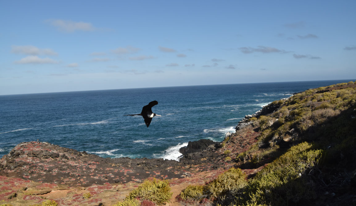 Pitt Point - San Cristobal in Galapagos Islands, view of a landscape with the sea, earth and sky