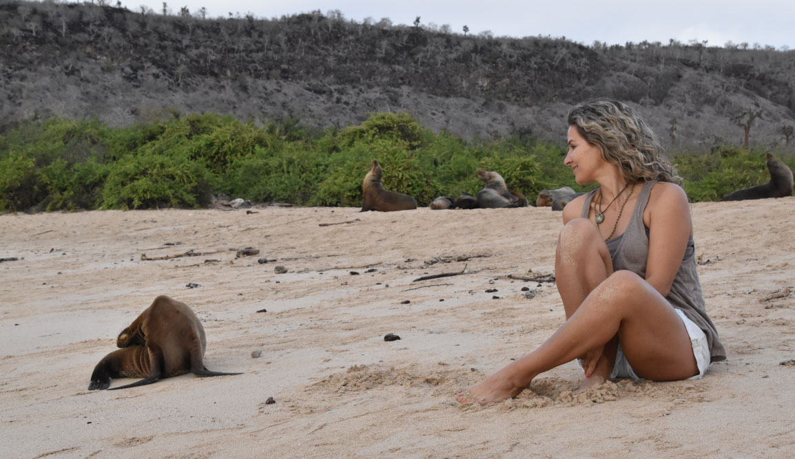 Santa Fe in Galapagos Island with Tourist looking a sea lion on the beach