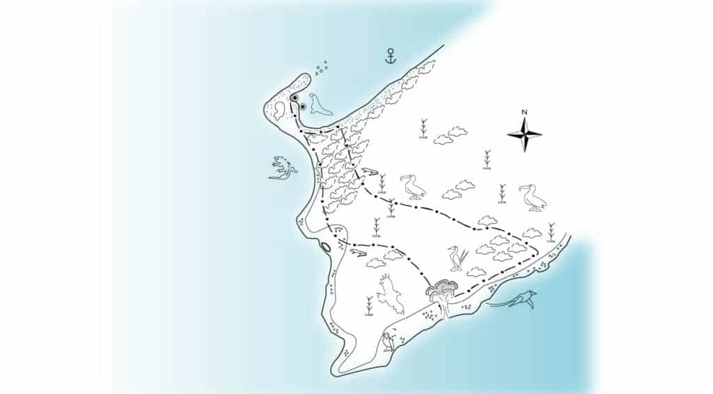 Illustration map of Suarez Point - Española in Galapagos with animasl