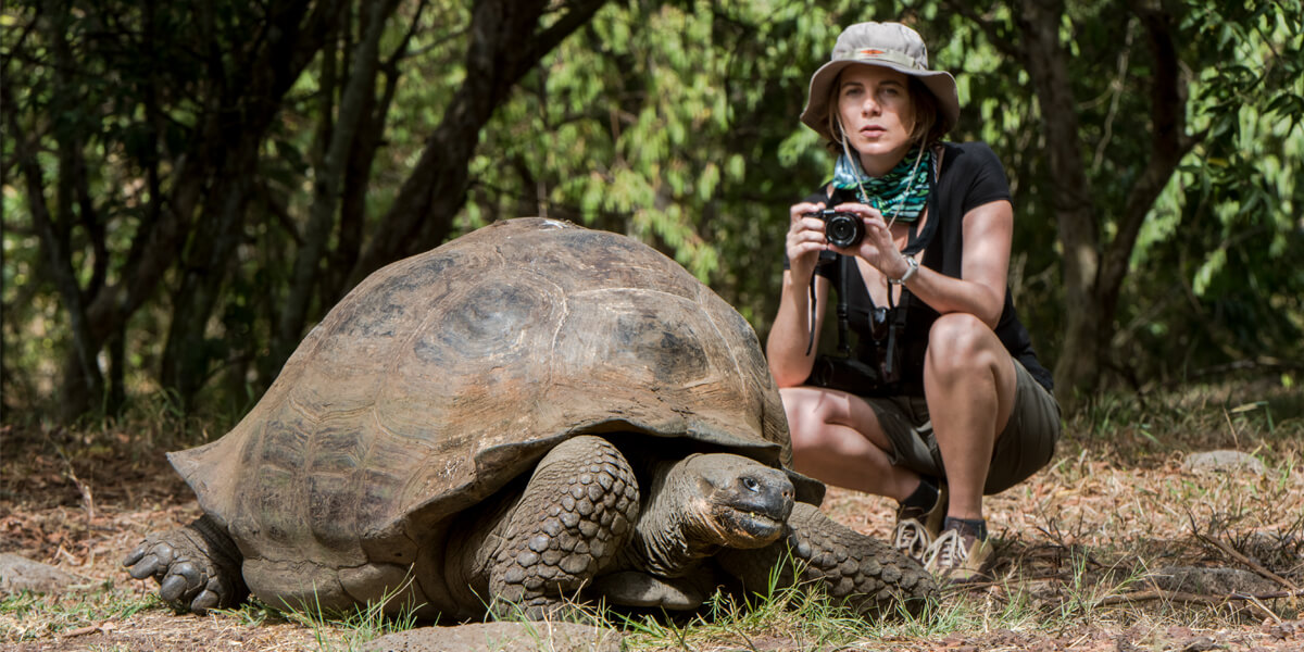 Tourist taking a picture of a Giant Tortoise