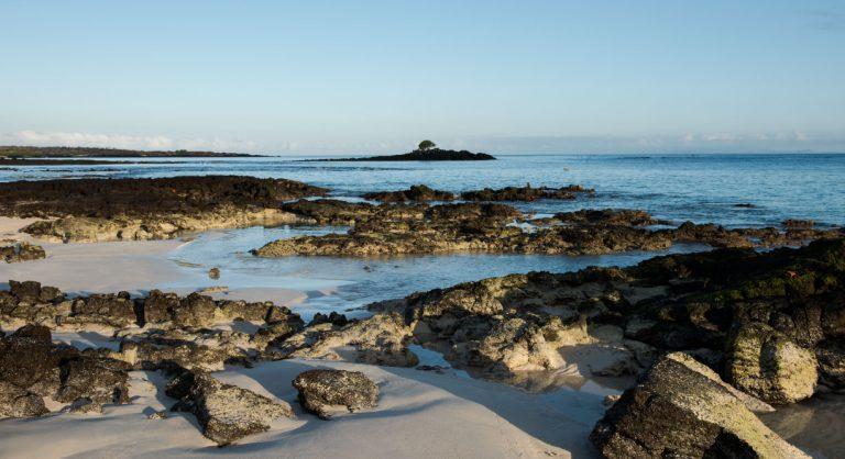 Bachas Beach - Santa Cruz in Galapagos Island beautiful white sand beach and volcanic rocks
