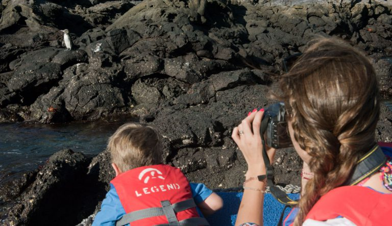 Bartolome in Galapagos Islands with kids looking a Galapagos penguin in the rocks and taking pictures