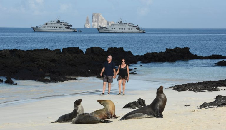 Cerro Brujo - San Cristobal in Galapagos Islands, couple tourist walking in the beach looking sea lions on the sand whit the Corals in the sea
