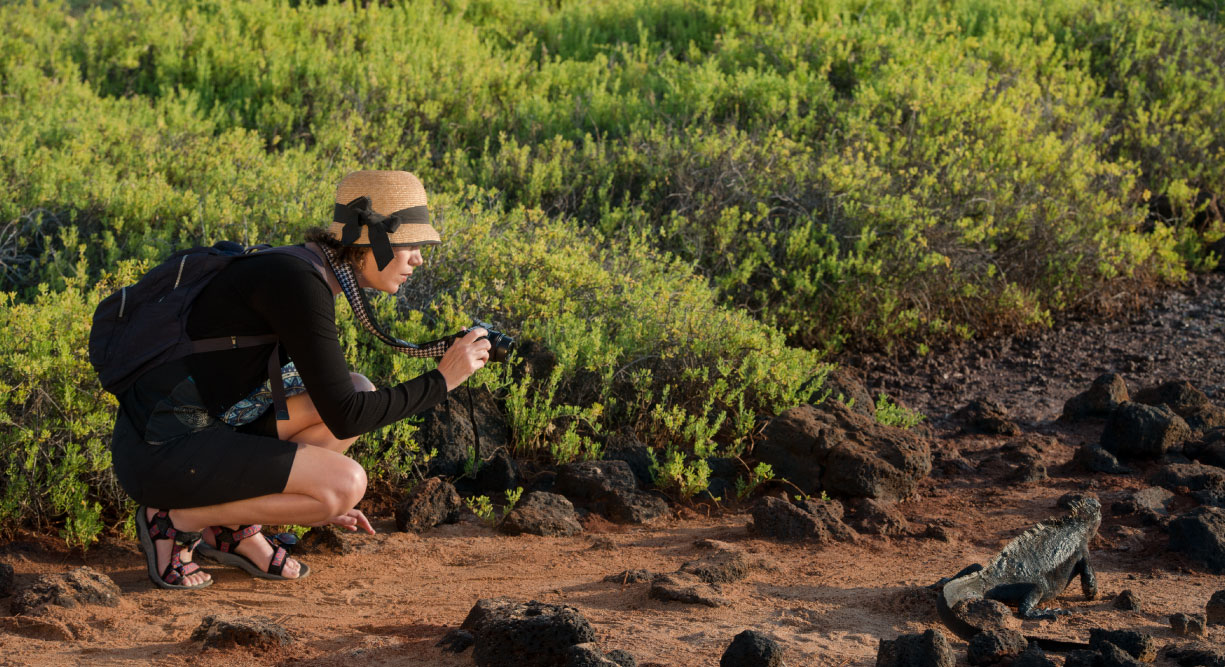 Dragon Hill - Santa Cruz in the Galapagos, tourist taking a picture of a land iguana