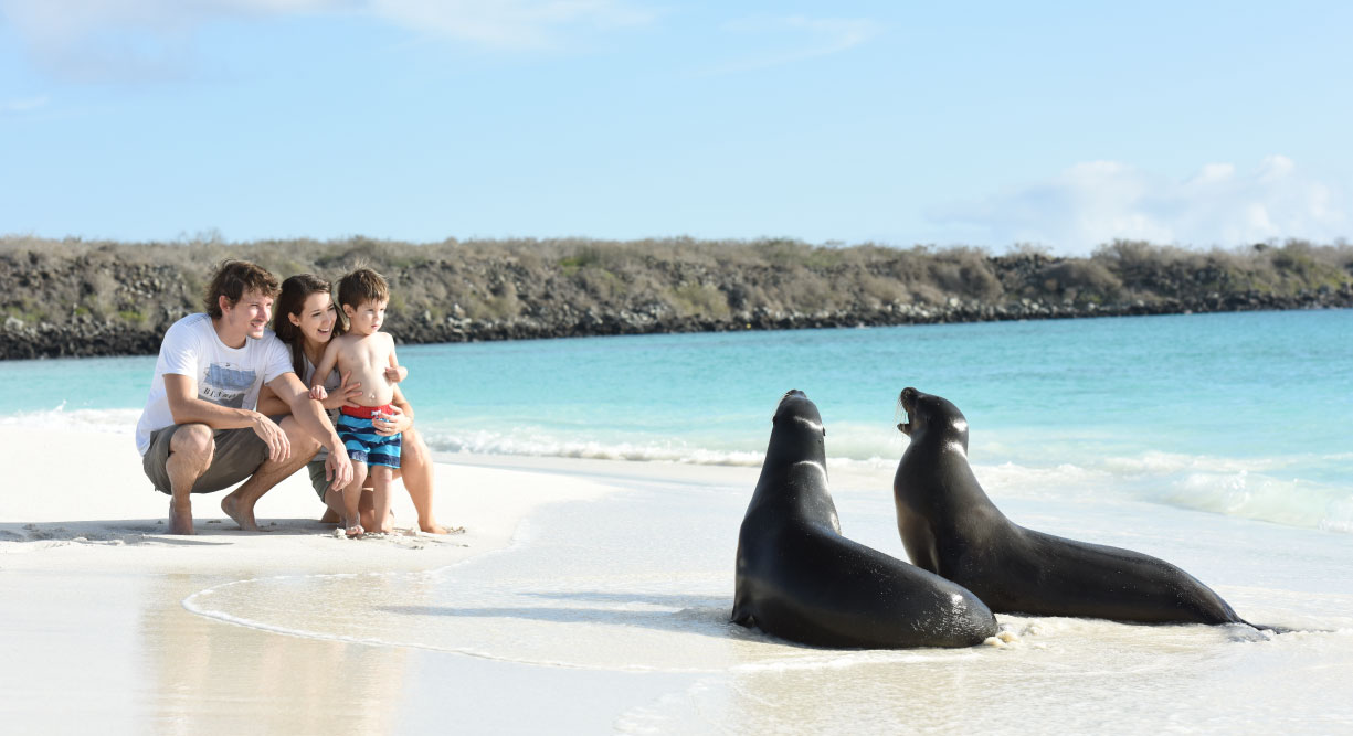 Gardner Bay - Española in the Galapagos Islands white sand beach with sea lion and tourist experience