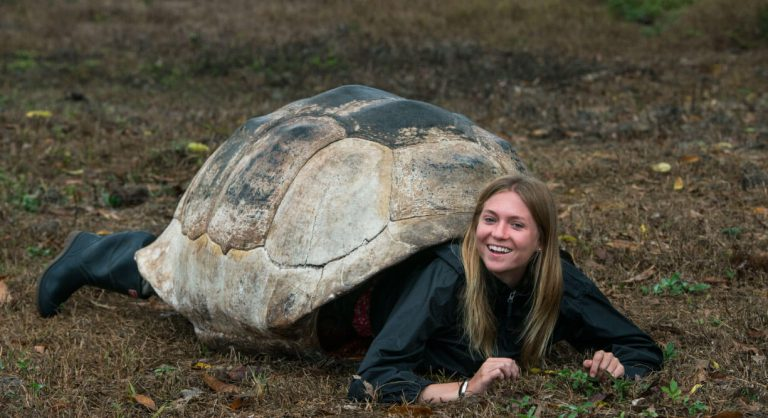 Highlands - Santa Cruz in Galapagos tourist playing with giant tortoise shell