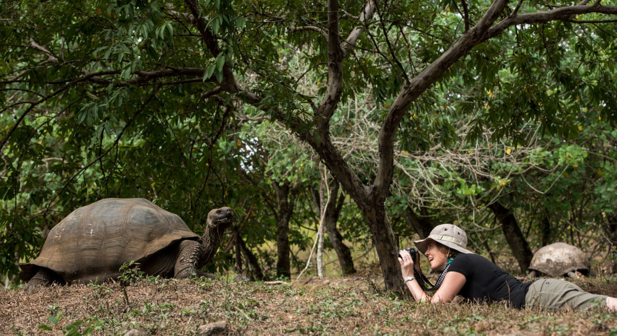 Highlands - Santa Cruz in Galapagos with lying tourist taking a picture of a giant tortoise