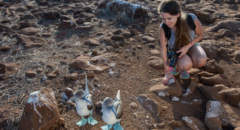 North Seymour in Galapagos Islands view of the blue footed boobie and tourist