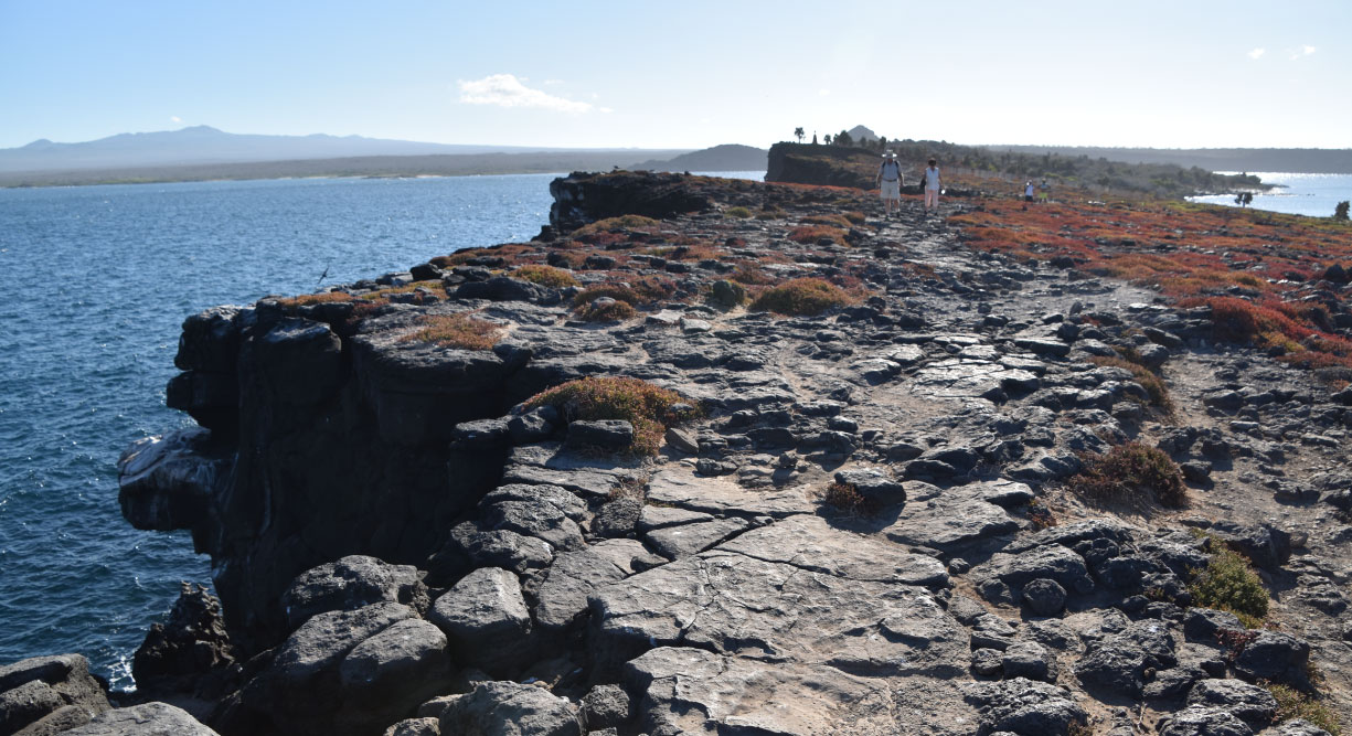 South Plaza in the Galapagos island landscape view