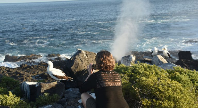 Suarez Point - Española in Galapagos Island Landscape view of the blowhole and tourist looking the masked boobies