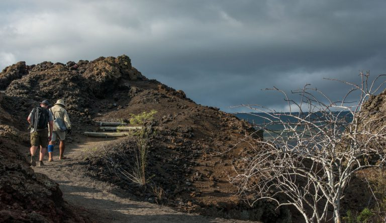 Tagus Cove - Isabela in the Galapagos Islands, tourist hiking with a experienced guide
