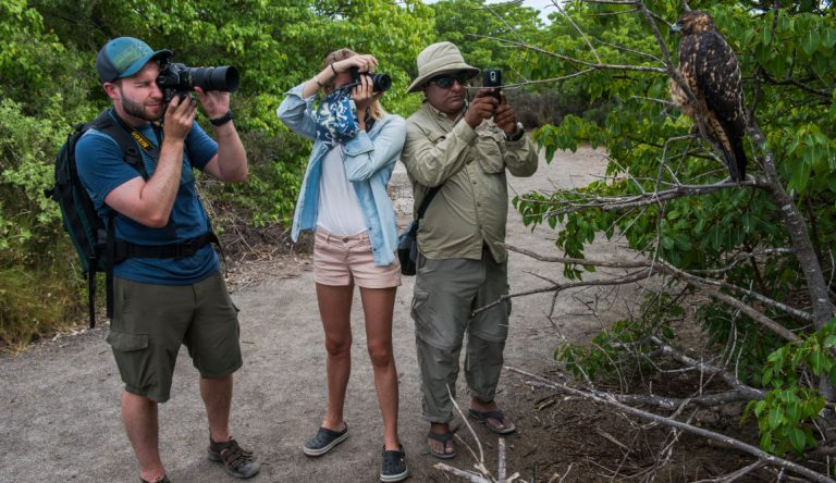 Urbina Bay - Isabela in the Galapagos with tourist taking pictures to Galapagos falcon