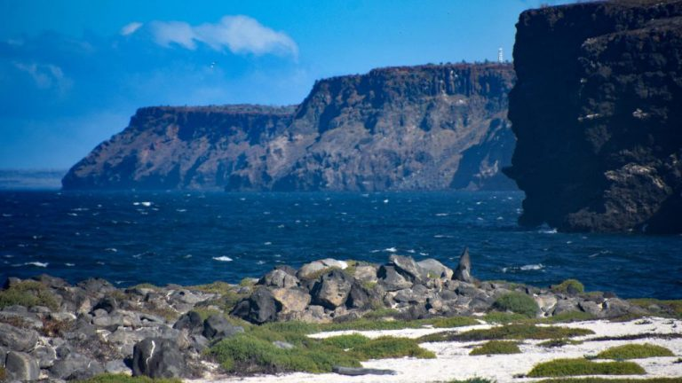 mosquera islet