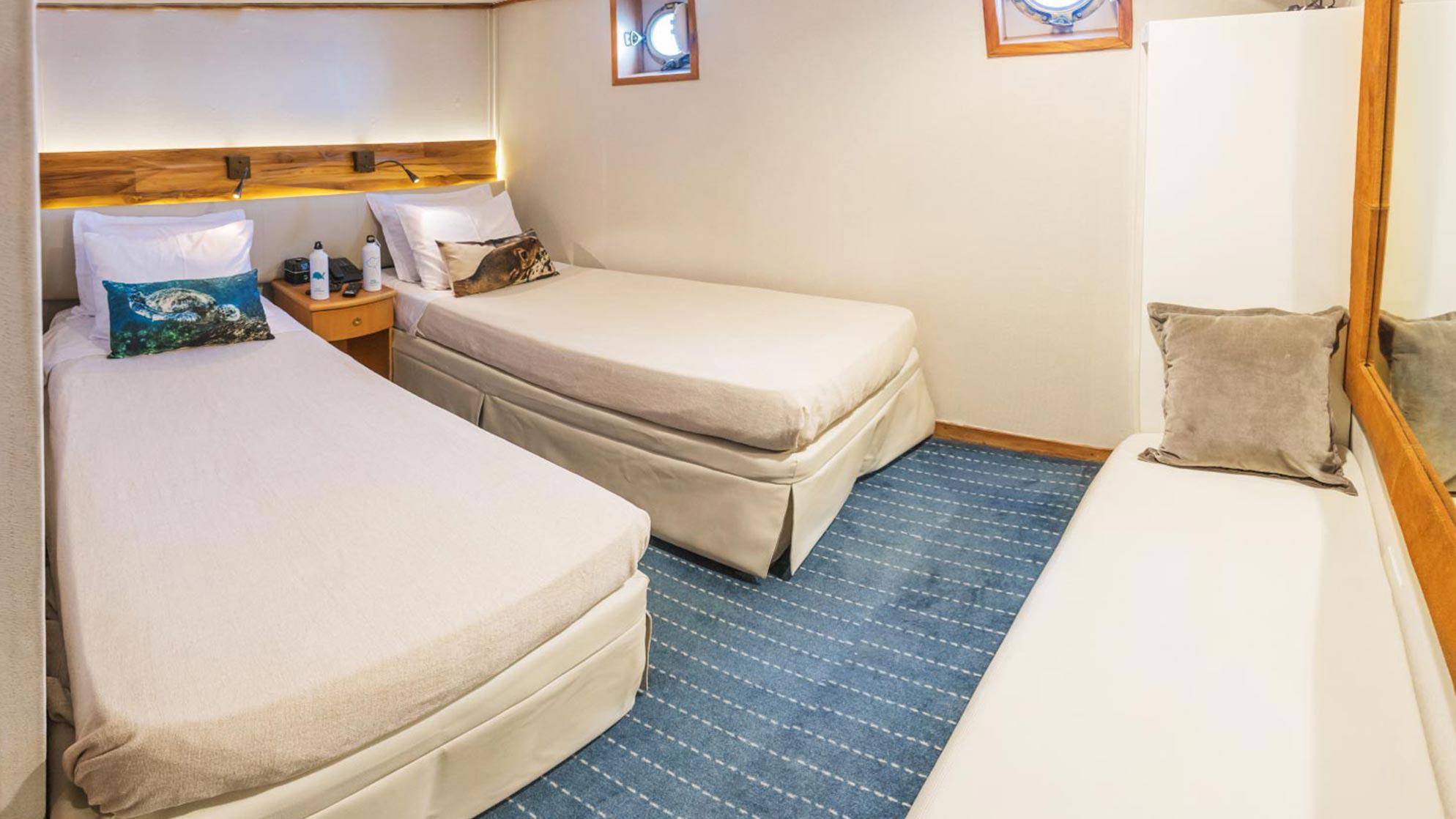 standard cabin coral 2