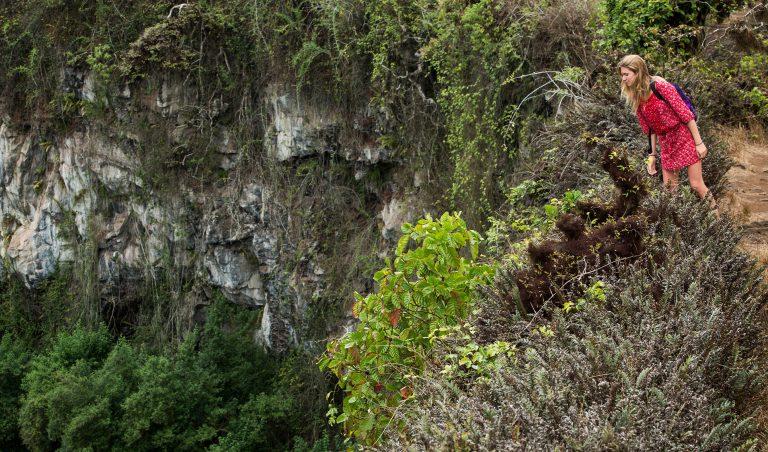 highlands 5 1