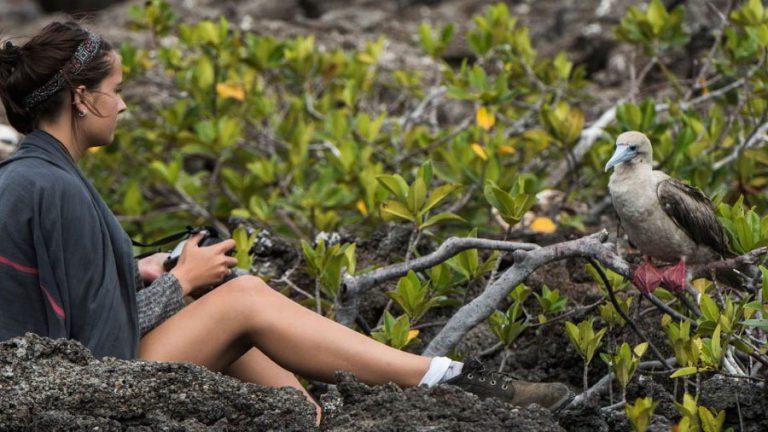 Why Galapagos?
